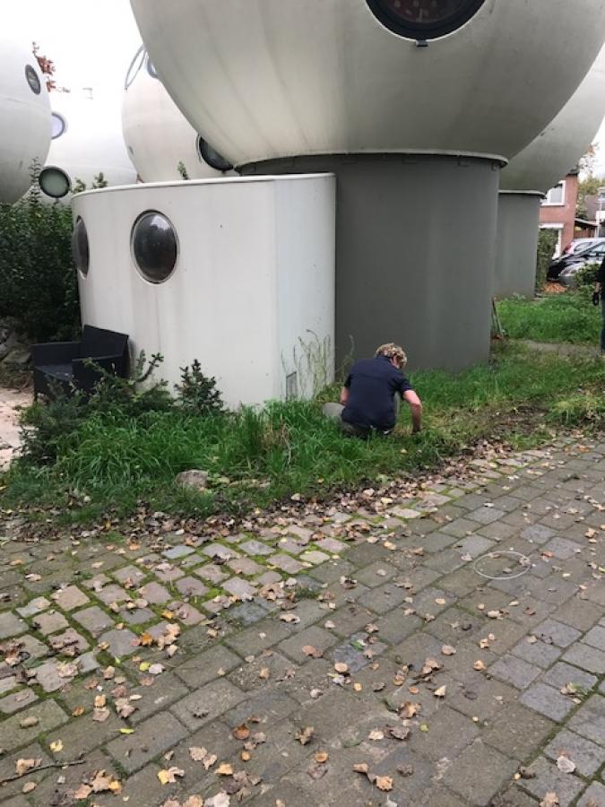 Hulp gehad bij het opknappen van zijn tuin